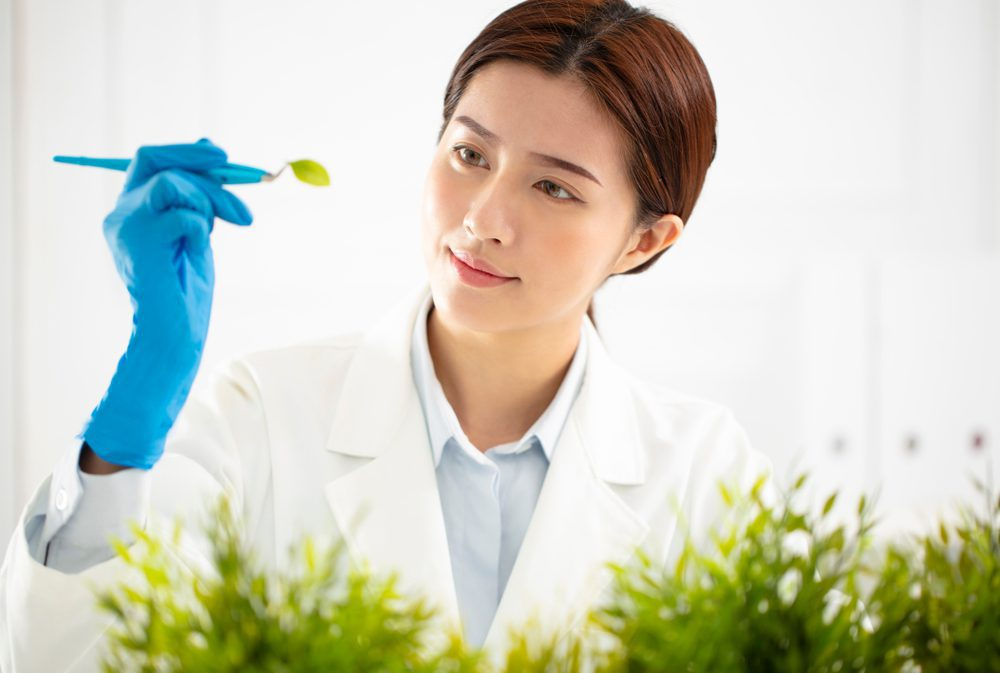 asian female scientist inspecting leaf
